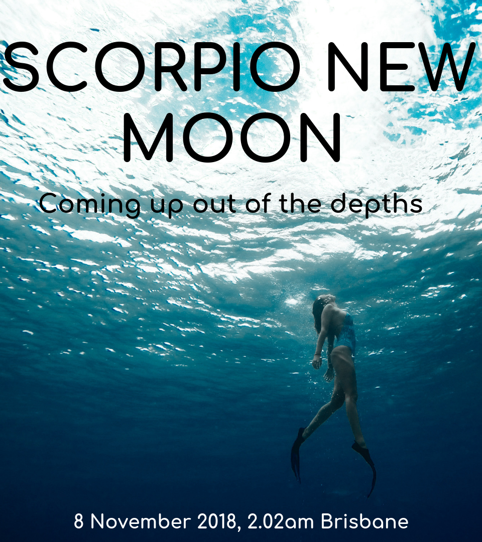 https://aliciayusuf.com/wp-content/uploads/2019/02/Scorpio-New-Moon-960x1080.png