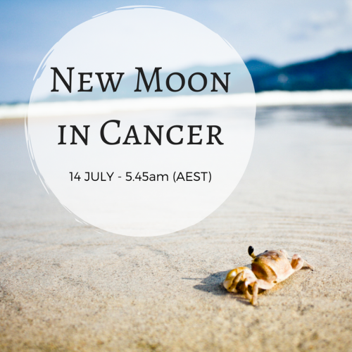https://aliciayusuf.com/wp-content/uploads/2019/03/Cancer-New-Moon-IG-e1551681228972.png