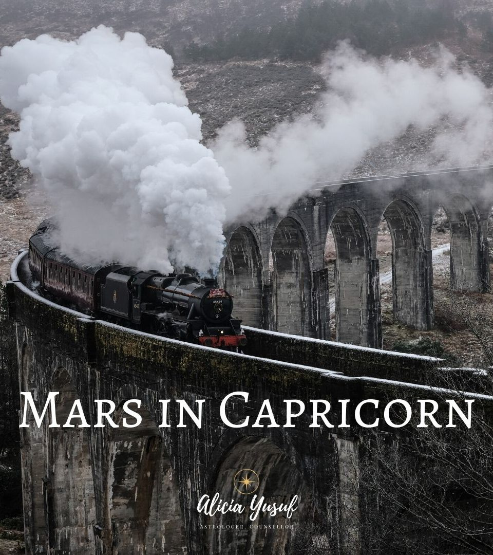 https://aliciayusuf.com/wp-content/uploads/2020/02/Mars-in-Capricorn-960x1080.jpg