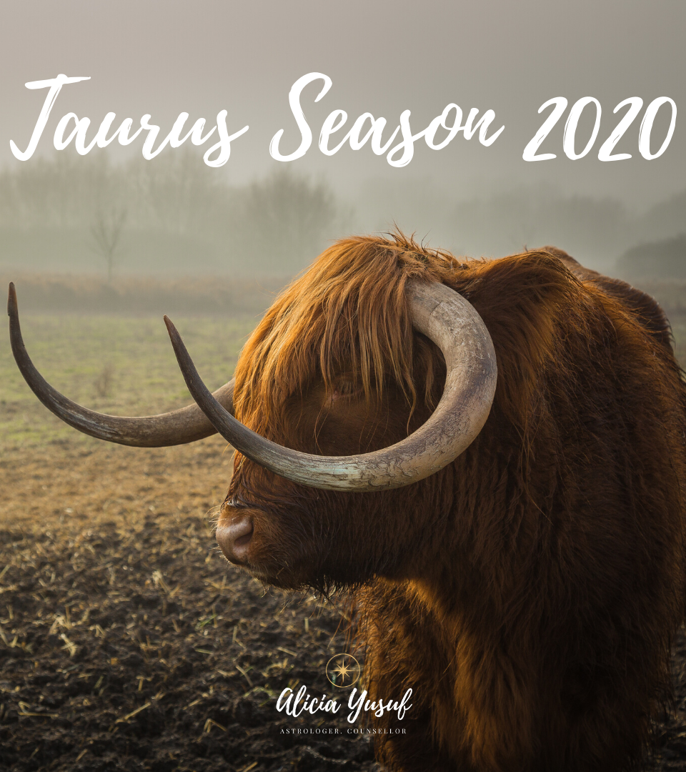 https://aliciayusuf.com/wp-content/uploads/2020/04/Taurus-Season-2020-960x1080.png
