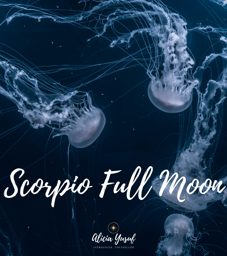 https://aliciayusuf.com/wp-content/uploads/2020/05/Scorpio-Full-Moon-960x1080.png